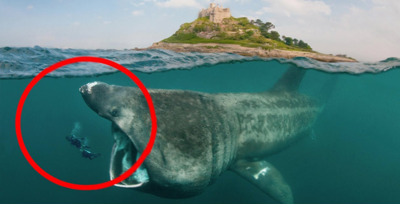 Top 10 Most Dangerous Waters In The World
