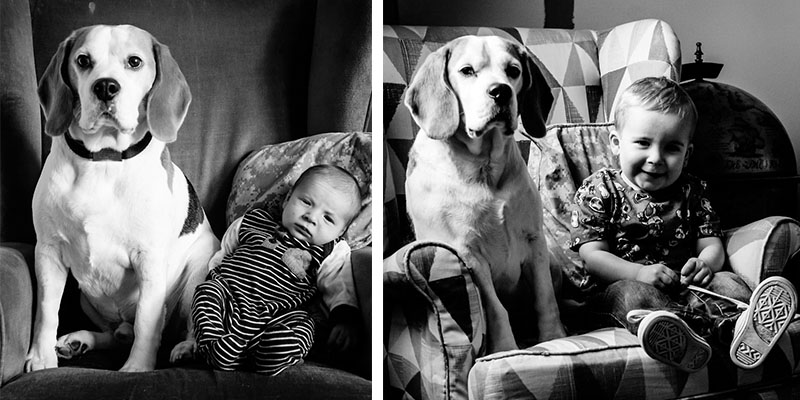 Pictures of My Son and Beagle on the Same Chair for 3 Years